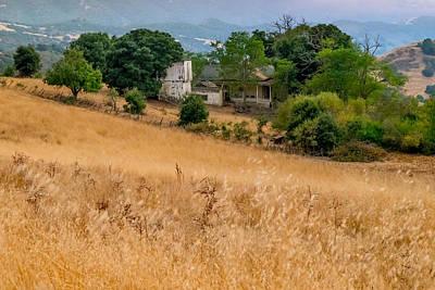 Photograph - On The Ranch by Derek Dean