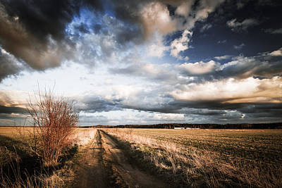 Photograph - On The Road Again  by Michael Damiani