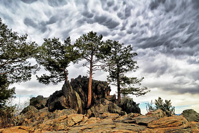 Photograph - On The Rocks by Ann Powell