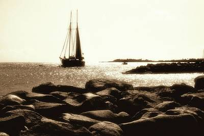 Photograph - On The Rocks by Karl Anderson