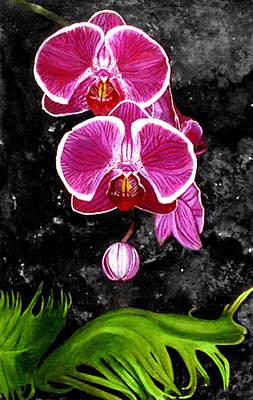 Maureen Hunt Piccirillo Painting - On The Rocks by Maureen Piccirillo
