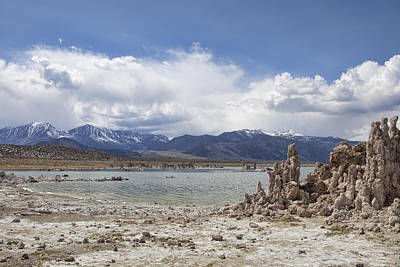 Photograph - On The Shore Of Mono Lake by Michele Cornelius