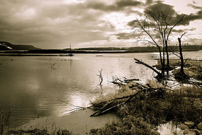 Photograph - On The Shore Of The Mississippi River by Joni Eskridge