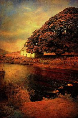 Photograph - On The Shore. Rural Ireland by Jenny Rainbow