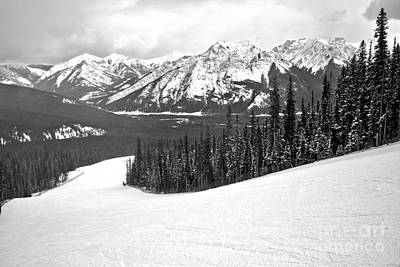 Photograph - On The Slopes Of Nakiska Black And White by Adam Jewell