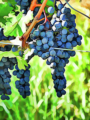 Photograph - On The Vine - Painting Effect by Leslie Montgomery