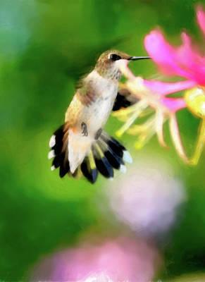 Hummingbird Digital Art - On The Wing by Betty LaRue