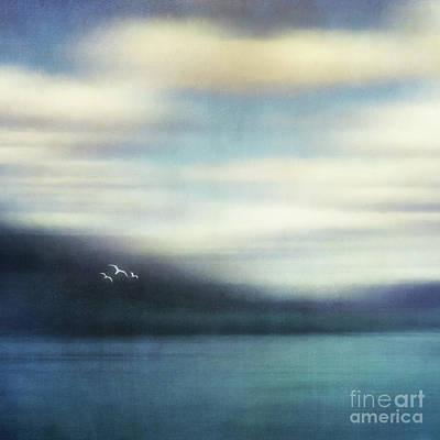 Indigo Photograph - On The Wing by Priska Wettstein