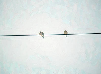 Photograph - On The Wire by Sue Collura