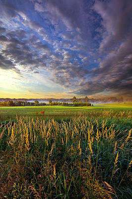 Photograph - On Their Way by Phil Koch