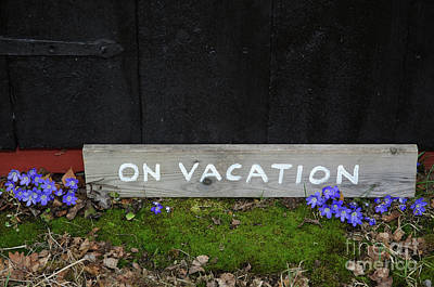 Photograph - On Vacation Sign By Blue Flowers by Kennerth and Birgitta Kullman