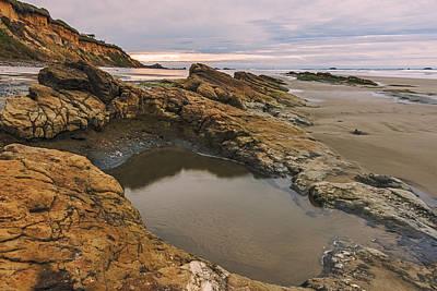 Photograph - Ona Beach Tidepool by Loree Johnson
