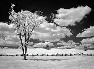 Photograph - Once A Battlefield by Art Cole