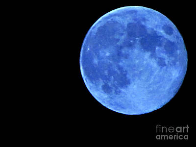 Photograph - Once In A Blue Moon by Serena Ballard