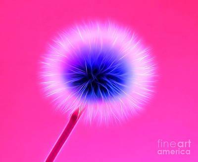 Floral Digital Art Digital Art - Once In A Lifetime Wish by Krissy Katsimbras