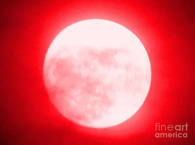 Photograph - Once In A Red Moon  by Carol Eliassen