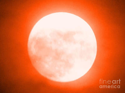 Photograph - Once In An Orange Moon by Carol Eliassen