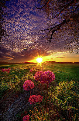 Photograph - Once Upon A Lifetime by Phil Koch