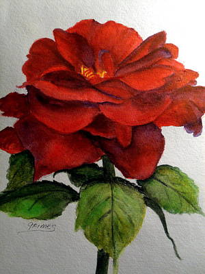 One Beautiful Rose Art Print by Carol Grimes