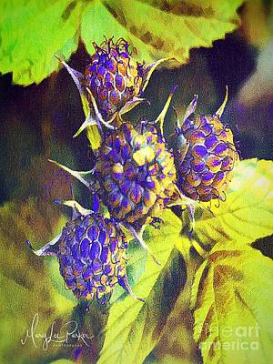 Digital Art - One. Berry -two Berry by MaryLee Parker