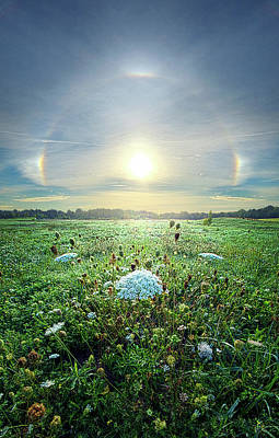 Unity Photograph - One By One by Phil Koch