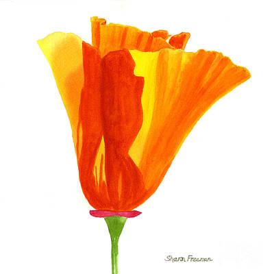 California Poppy Painting - One California Poppy Flower by Sharon Freeman