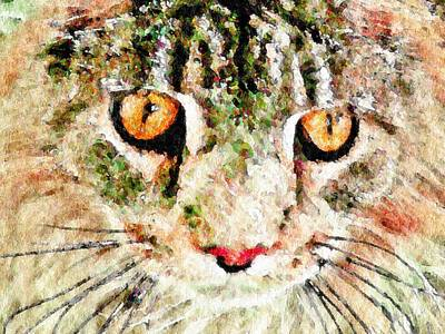 One Cool Cat Art Print by Terry Mulligan
