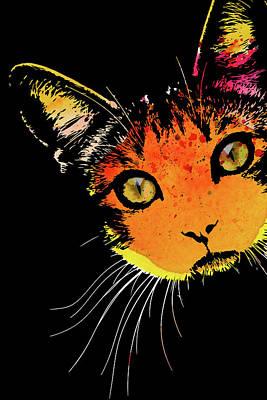 Watercolor Pet Portraits Photograph - One Curious Cat by Mihaela Pater