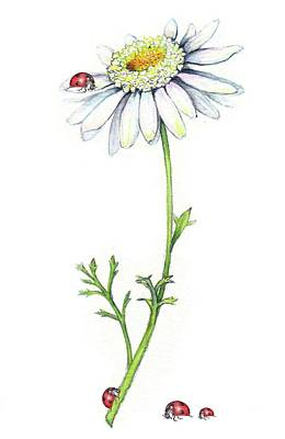 Art Print featuring the painting One Daisy And Four Ladybugs by Heidi Kriel