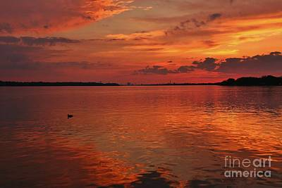 Photograph - One Ducky Reflective Sunset On The Niagara River by Tony Lee