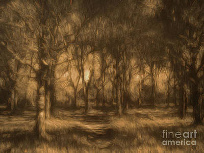 Photograph - One Enchanted Evening by Leigh Kemp