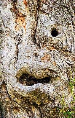 One Eye Tree Face Art Print by John  Bartosik