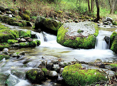 Jim Nelson Photograph - One-eyed Rock In Ashland Creek by Jim Nelson