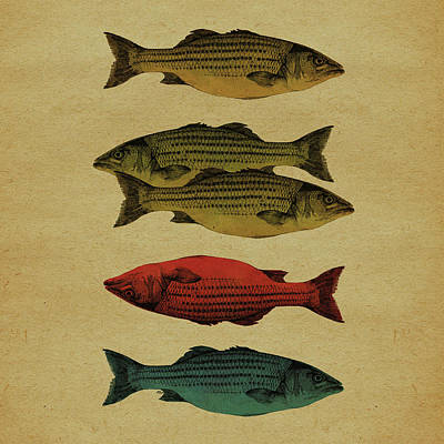 One Fish, Two Fish . . . Art Print by Meg Shearer