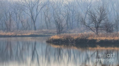 Photograph - One Foggy Morning by Elizabeth Winter