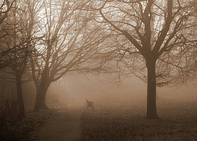 Photograph - One Foggy Morning by Judi Saunders