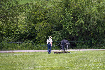 Amish Photograph - One Horsepower Mower by David Arment