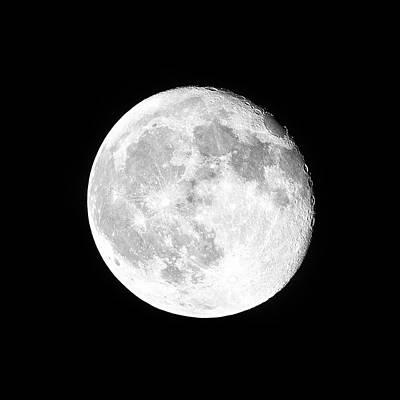Photograph - One Moon by Dianna Lynn Walker