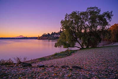 Photograph - One Morning At The Lake by Ken Stanback