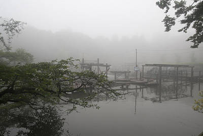 Photograph - One Morning by Masami Iida