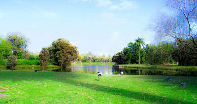 Photograph - One Of 11 Ponds Of Centennial Park by Miroslava Jurcik