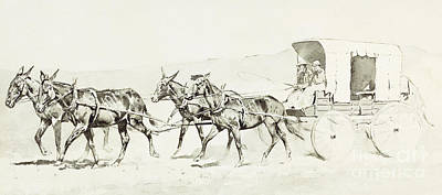 Indigenous Drawing - One Of Williamson's Stages by Frederic Remington
