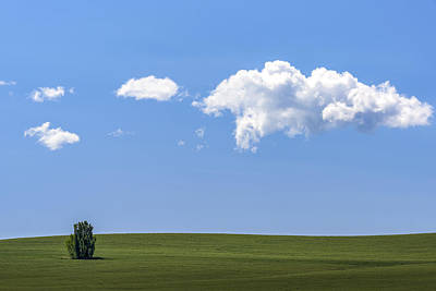 Photograph - One On The Green  by Jon Glaser