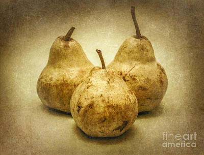 Photograph - One Pair Too Many by Jorgo Photography - Wall Art Gallery