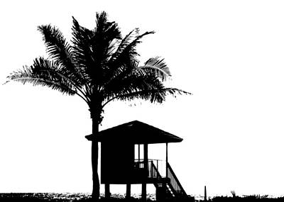 Photograph - One Palm Cut-out Delray Beach Florida by Lawrence S Richardson Jr