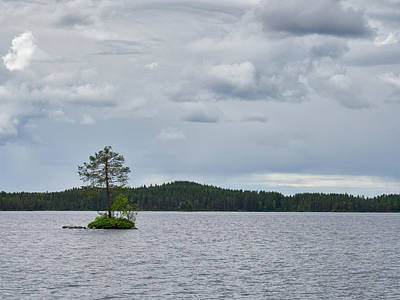 Photograph - One Pine Island. Koirajarvi by Jouko Lehto