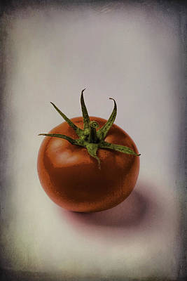 One Red Tomato Art Print by Garry Gay