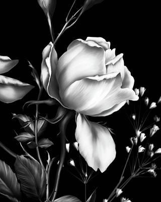 Digital Art - One Rose Bloom Black And White by Georgiana Romanovna