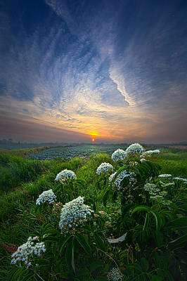Hope Photograph - One Small Step by Phil Koch