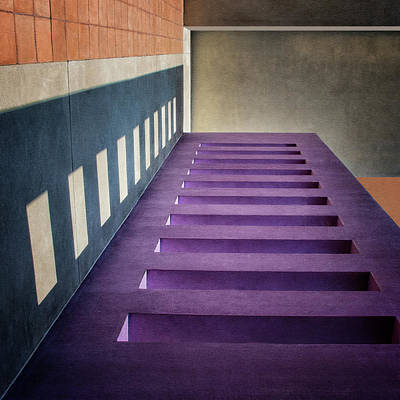Photograph - One Step At A Time by Nikolyn McDonald